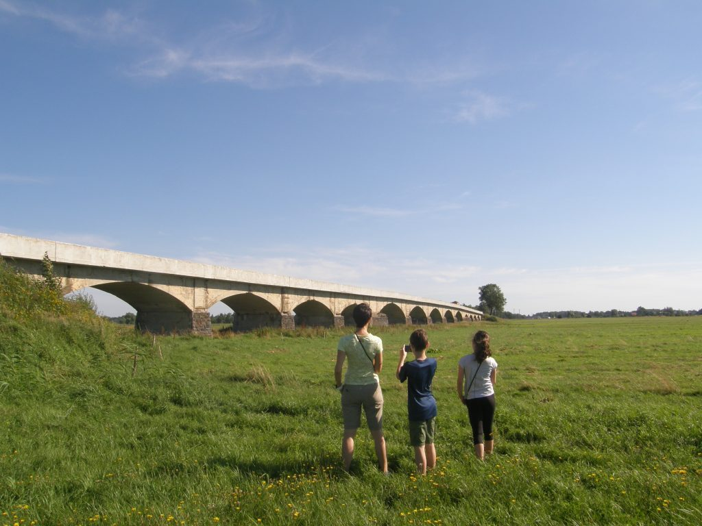 Griniaus tiltas