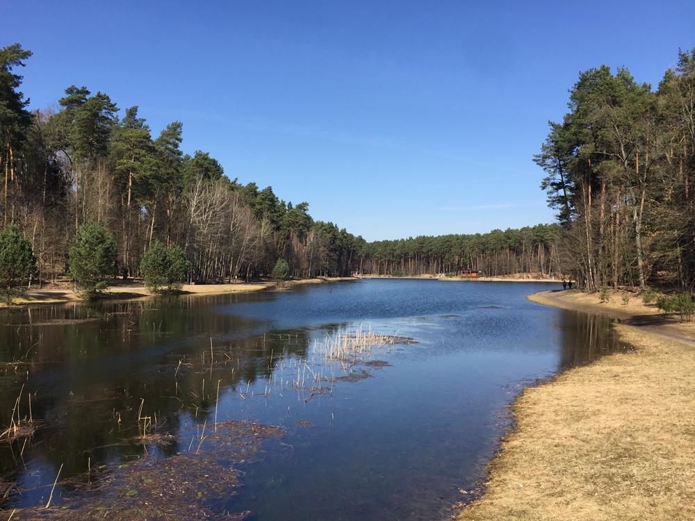 Dailides ezeras