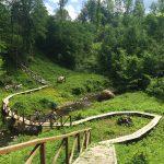 Asvejos regioniniame parke įkurtas Jurkiškio upelio pažintinis takas mano akiratyje atsirado dėliojantis kelionės maršrutą po Dubingių miestelio apylinkes.