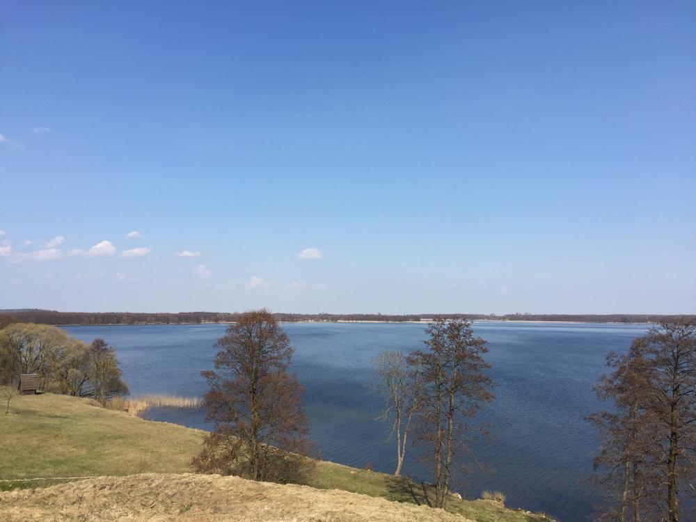 Dusios ezeras