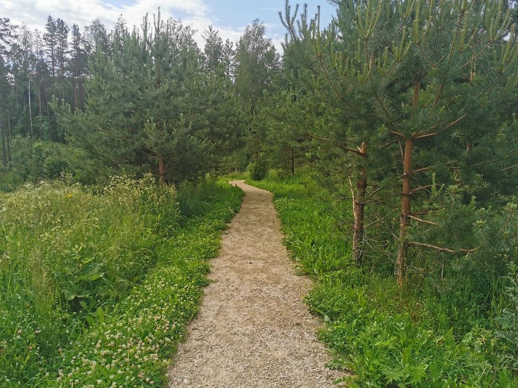 Kačėniškės piliakalnio pėsčiųjų takas
