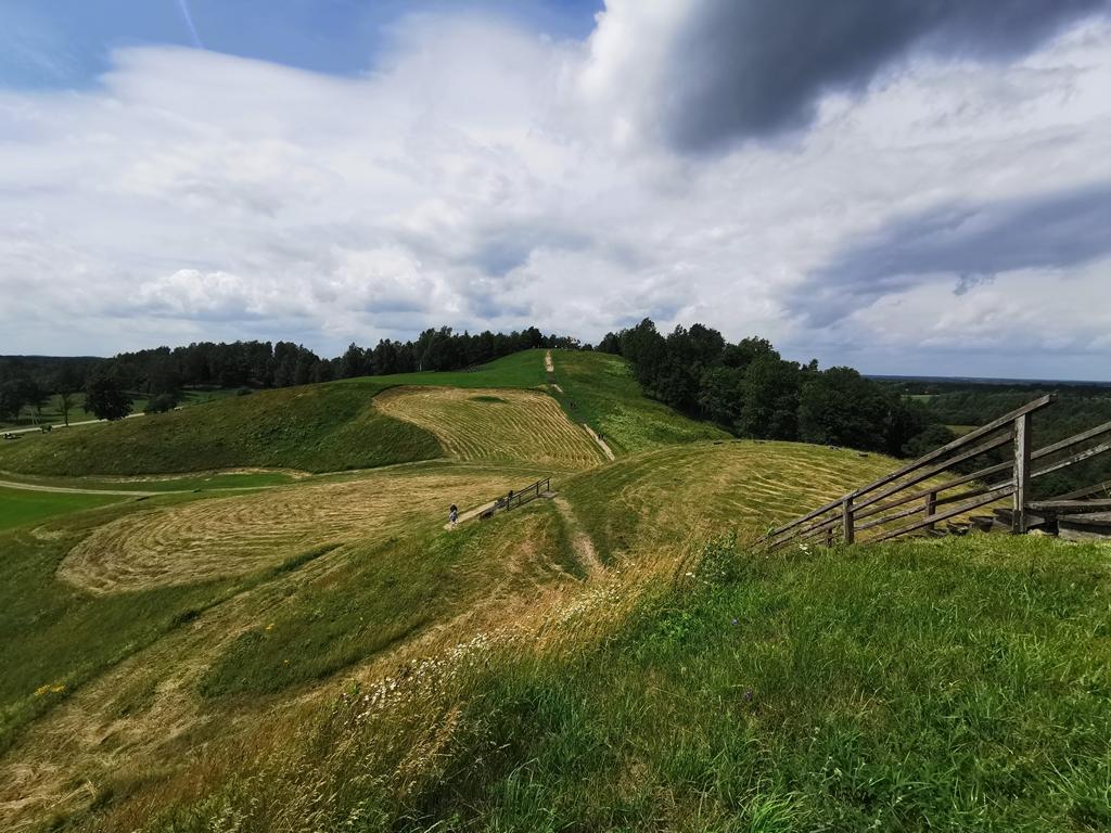 Medvėgalio piliakalnis