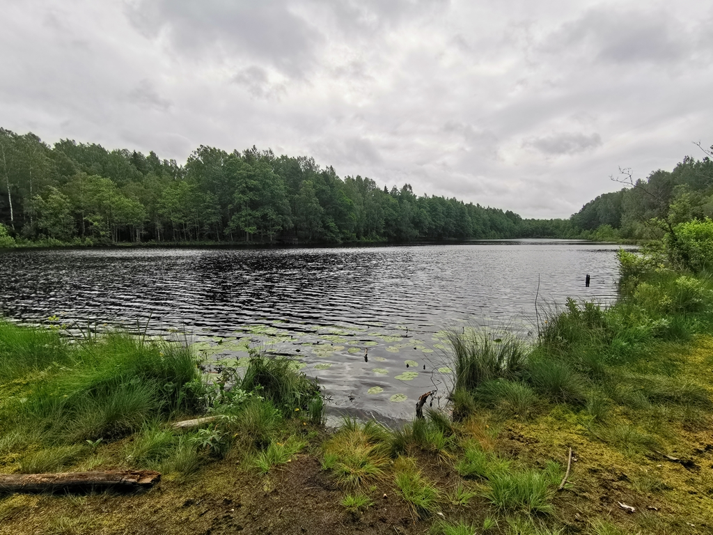Ilgio ežero takas